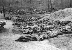 katyn-massacre