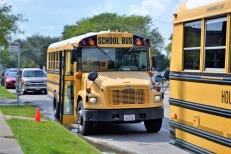 school-buses-2801134_960_720